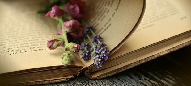 De unde provine mirosul cărţilor vechi »