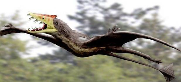 Cercetătorii UBB au descoperit o nouă familie de reptile mezozoice din Transilvania