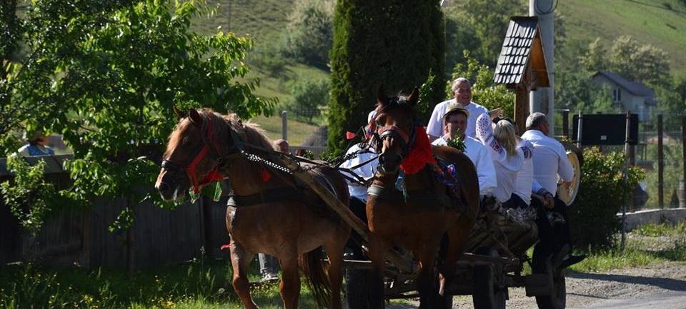"""Zece căruțe trase de cai pornesc din Sighet spre Alba Iulia pentru a reface """"Drumul Unirii"""""""