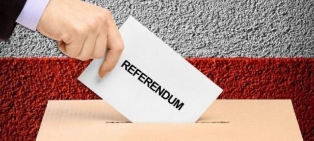 Desfășurarea procesului electoral al alegerilor parlamentare  și referendumului național