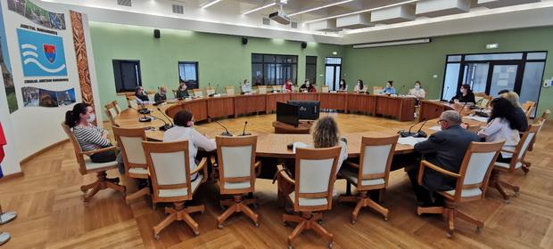 S-a dezbătut metodologia privind depistarea SARS-CoV-2, prin testarea voluntară a 50.000 de maramureșeni