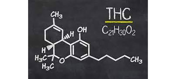 APC a sesizat DIICOT cu privire la substanța psihotropă tetrahidrocanabinol din alimentele retrase de LIDL de la vânzare